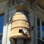 Une ruche d'abeilles aux Halles, au coin Rambuteau / Lescot