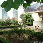 Un petit jardin, rue des Ursins