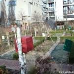 Le jardin potager du Parc de Bercy