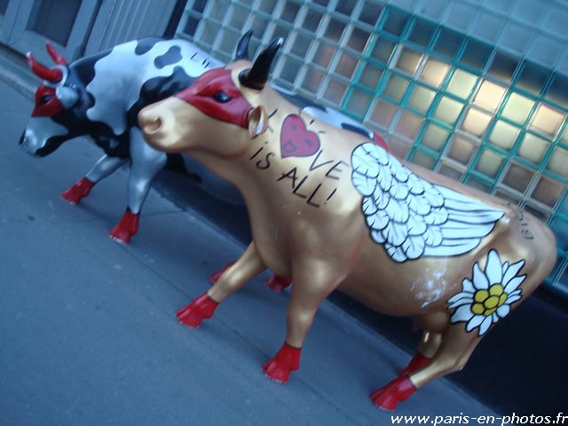 vache love is all