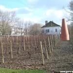 Les vignes de Bercy