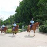 La Garde Républicaine à cheval
