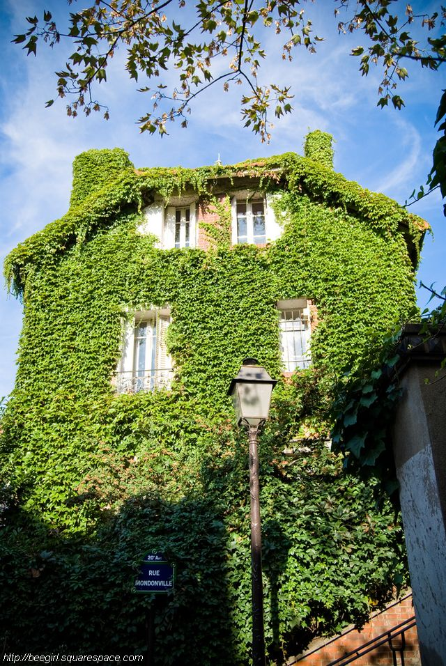 maison lierre rue mondonville beegirl