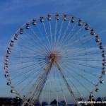 Faire la roue aux Tuileries