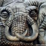 Enigme de l'éléphant