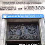 La nouvelle Facult de Mdecine